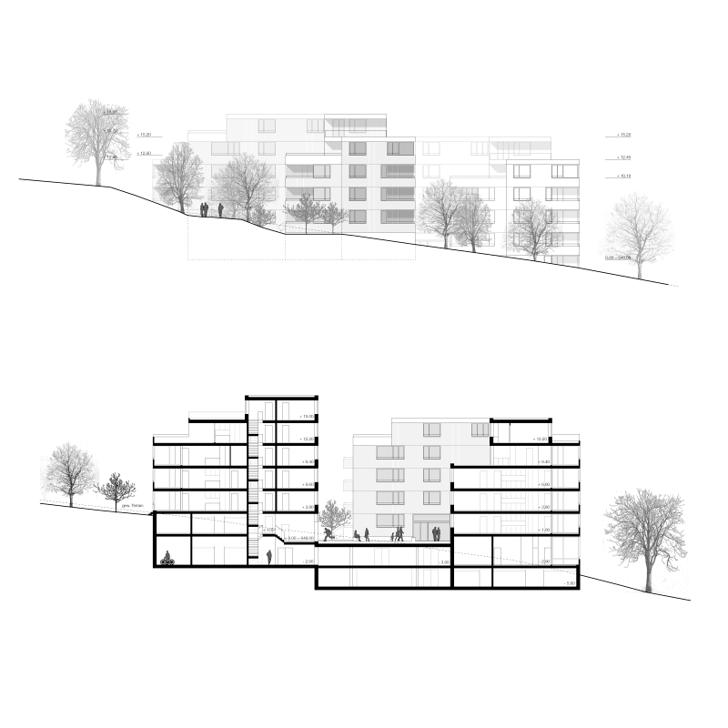 Study Waldacker A1, St. Gallen, Switzerland, 2017 – elevation and section.